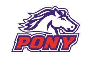 Pony_20200510213301